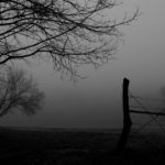 Fog People: Stories from the back of the Ambulance